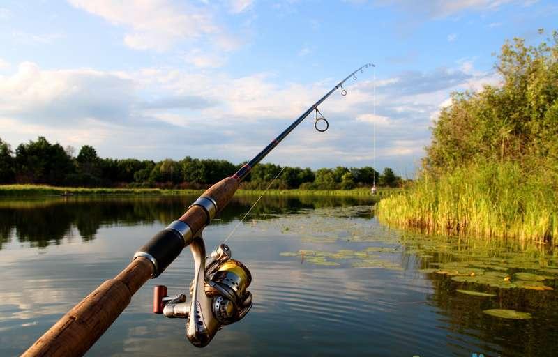 стоимость рыболовных спиннингов